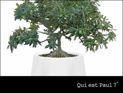 Qui est Paul