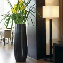 Een mooie regendruppel-vormige plantenbak
