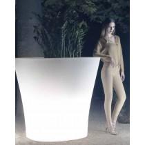 Bones XL Light  LED