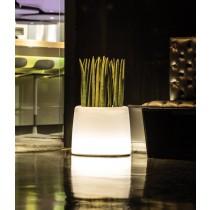 Plantenbak Ice Light