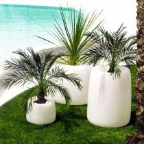 Plantenbak organic rond