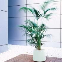 Plantenbak Novo Medium (aanbieding)