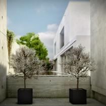 Plantenbak Piazza