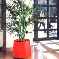 Plantenbak Novo laag