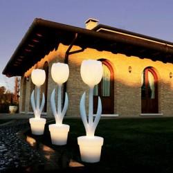 Tulip Light XL