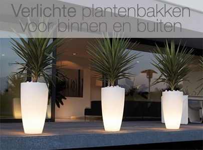 Grote Plantenbak Binnen.Design Plantenbakken En Originele Bloempotten Designpotten Nl