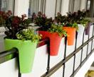 Balkon bloembakken